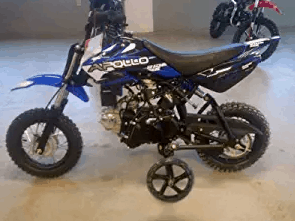 APOLLO New Youth Fully Automatic DB25-70cc Dirt Bike