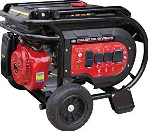All Power America G12000EGL 12000 Watt Heavy Duty Dual Fuel Portable